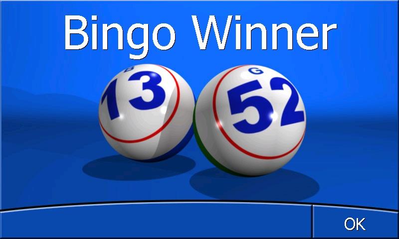 Bingo Winner Screen